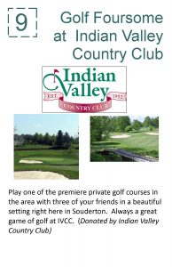 2017 #9 Live Auction Poster (Indian Valley Country Club)